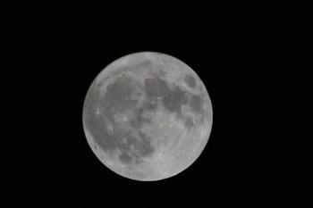 20201031満月 (1).JPG